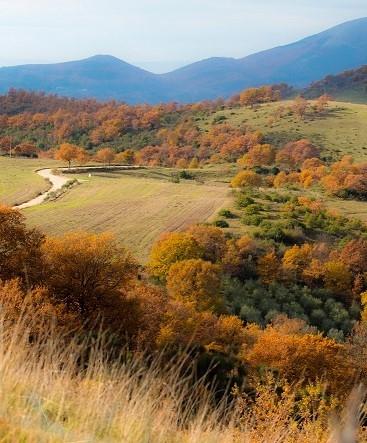 il bello e il brutto dell'autunno